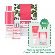 A'PIEU Mulberry Blemish Clearing Special Set